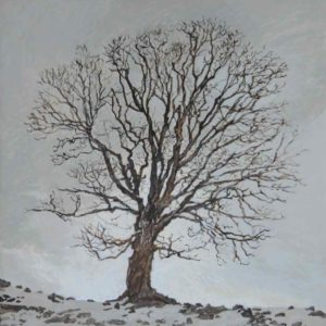 "<strong>Hilltop Maple</strong>, 2020<br>8""x 8""<br>Egg Tempera on True Gesso Birch Panel"